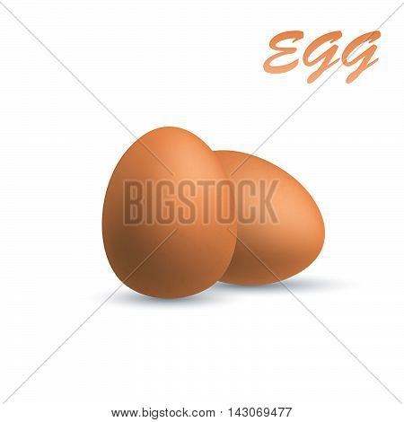 Brown eggs, isolated on white, realistic vector illustration.