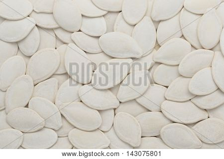 Close-up and detail of pumpkin seeds background