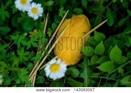 Yellow Cotton Yarn Ball Lying On The Grass, Along With Bamboo Needles