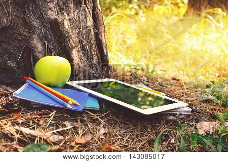 Under a big tree lying tablet with notebooks colored pencils and apple at park in summer sunset light