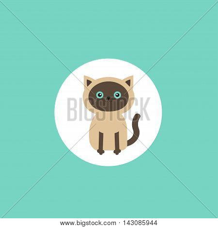 Siamese cat round circle icon in flat design style. Cute cartoon character. Happy sitting kitten with blue eyes. Isolated. Vector illustration
