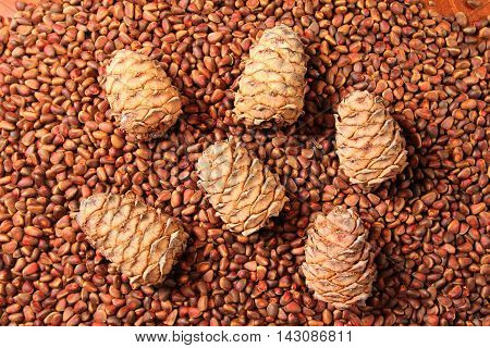 Fresh Siberian pine cedar nuts and pine cones - background and texture
