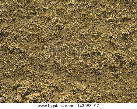 Marshland Background Sepia