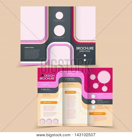 Elegant Half-fold Brochure Design