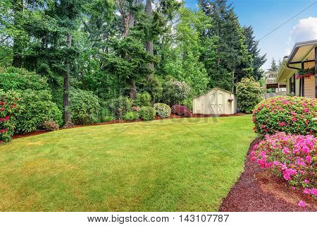 Well Kept Garden At Backyard With Trees, Bushes And Flowers.