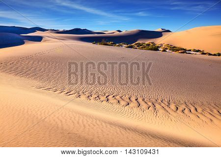 Mesquite Flat Sand Dunes. Thin waves on sand. Bright solar morning in picturesque part of Death Valley