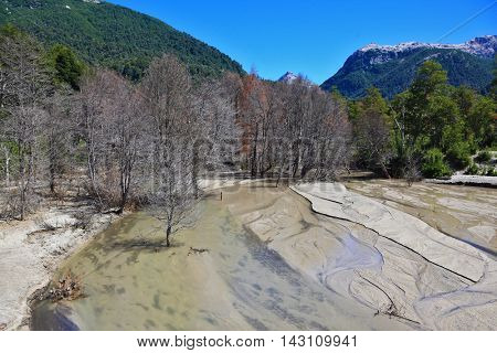 Riverbed in the mountains of the Argentine Patagonia. The river is almost completely covered with volcanic ash. Many trees withered in the eruption