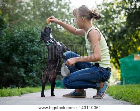 Girl walking a dog and to train. Puppy jumping for treat. Street of the city summer. French Bulldog in black