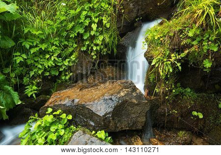 Waterfall in forest. Beautiful natural landscape in the summer time