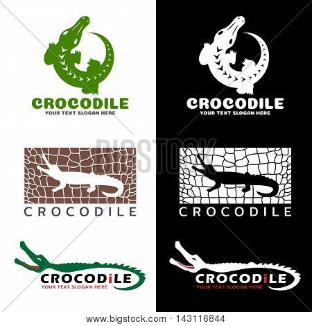Crocodile and crocodile texture logo vector set design