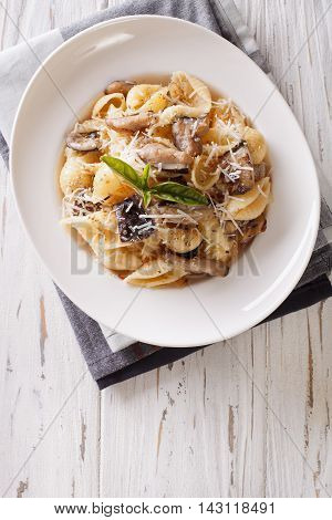 Pasta With Roasted Porcini Mushrooms And Parmesan Close-up. Vertical Top View