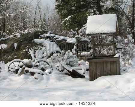 Snowy Rock Garden