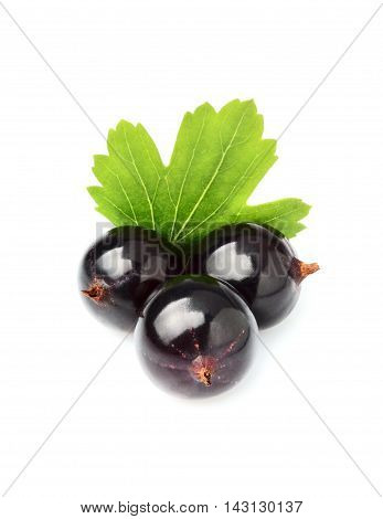 Fresh currant berries with leaves isolated on white background.