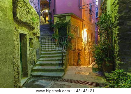 Narrow dark alley and stairway in the old town - typical Italian charming street decoration with plants and flowers at night in fishing village Vernazza, Five lands, Cinque Terre National Park, Liguria, Italy.