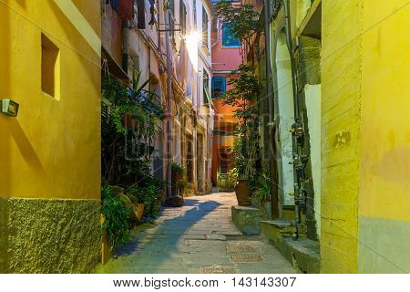 Narrow dark alley in the old town - typical Italian charming street decoration with plants and flowers at night in fishing village Vernazza, Five lands, Cinque Terre National Park, Liguria, Italy.