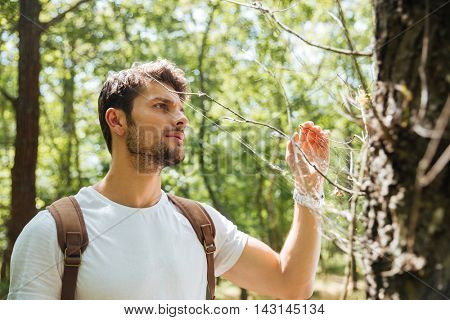 Serious young man standing and looking at spider web in forest