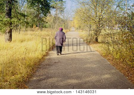 Lonely woman walks in park. Pensioner with a cane in hand