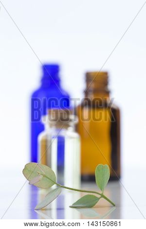Herbal medicine Eucalyptus aromatherapy essential oils in bottles