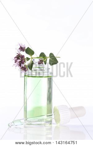 Essential oil with oregano leaves and flower on top of the bottle