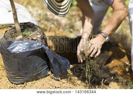 Happy Man Planting