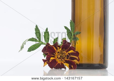 Small bottle of essential oil Tagetes flowers extract