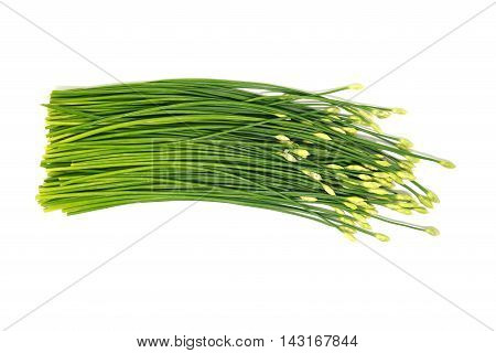 green garlic chives leaf on white isolate backgrond