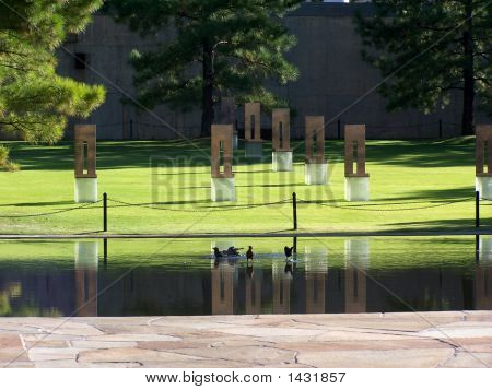 Field Of Empty Chairs & Reflecting Pool