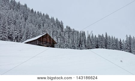 Winter landscape near Gstaad. Nature background. Wintery forest.