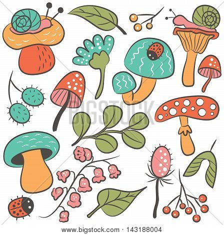 Vector doodle icon set with mushroom ladybird snail flower and leaf. Nature colorful collection of childish characters and plants.