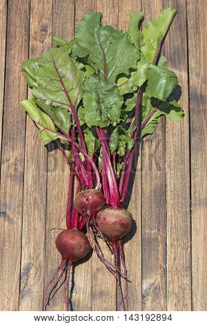Fresh beetroots on wooden surface above view