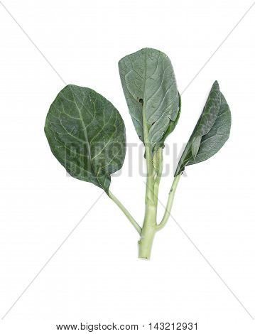 Chinese kale fresh vegetable a  broccoli on white background.