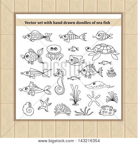 Vector set with hand drawn isolated doodles of sea fish. Flat illustrations on the theme of sea summer and travel. Sketches for use in design, web site, packing, textile, fabric