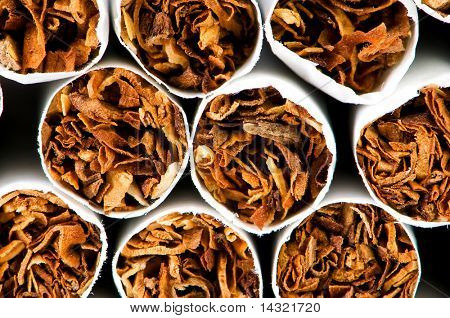 Close up of smoking cigarettes as anti smoking concept