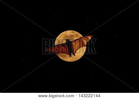 Halloween night with bat flying over the moon