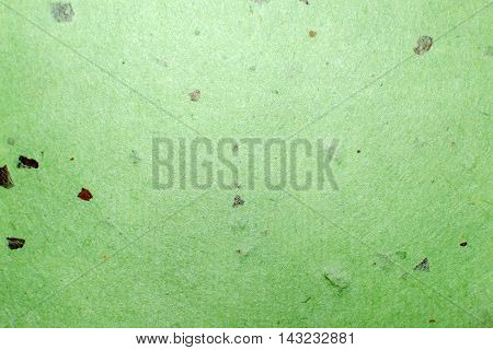 Green Mulberry paper for background or abstract