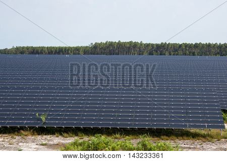 Panels of a photovoltaic plant in the country