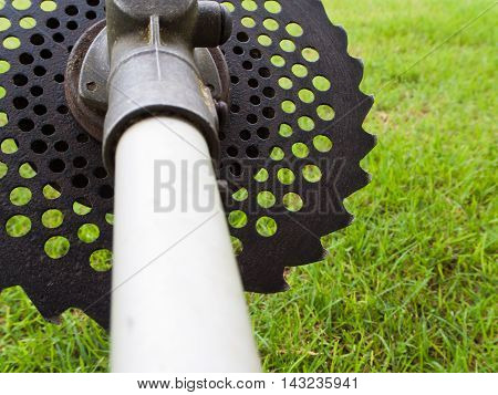 Circular saw blade for cut gnarled bushes and thin tree trunks