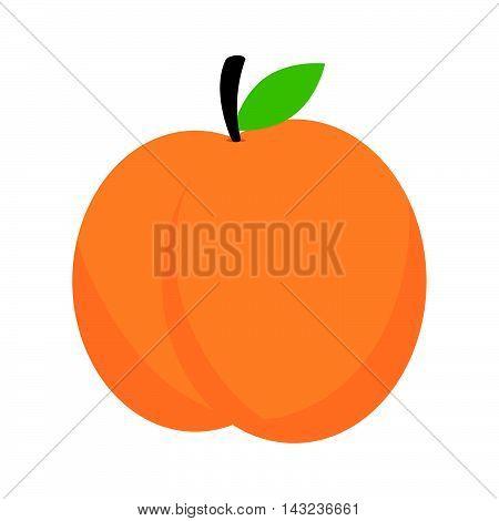 peach fruit dessert food healthy fresh nature organic vector illustration