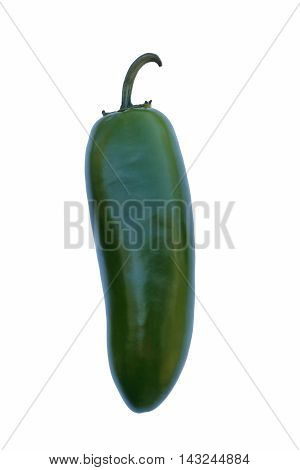 Jalapeno hot (Capsicum annuum Jalapeno). Image of single pepper on white background