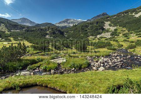 Panoramic view of Banderishki Chukar Peak and mountain river, Pirin Mountain, Bulgaria