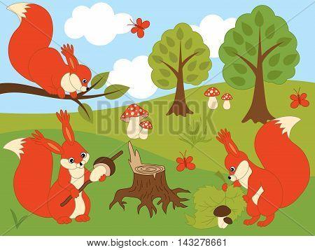 Vector cartoon orange squirrels in the forest