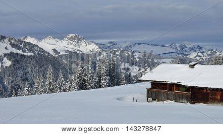 Winter scene on Mt Wispile. Gstaad. Swiss Alps.
