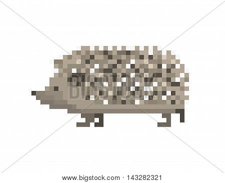 Vector pixel art icon realistic gray walking hedgehog isolated on white background.