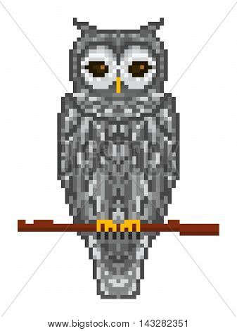 Vector pixel art gray forest horned owl sitting on a tree branch isolated on white background.