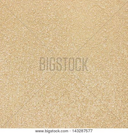 Sandstone texture / Sandstone texture background texture of sandstone background