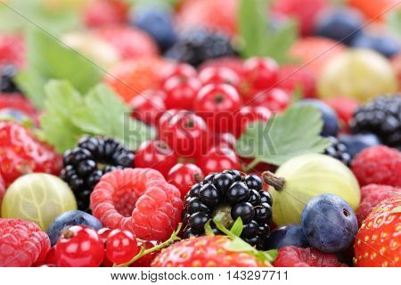 Berry Fruits Berries Collection Strawberries, Blueberries Raspberries Leaves Copyspace