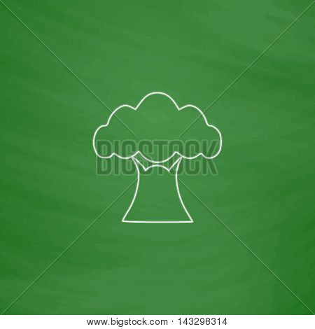 Baobab Outline vector icon. Imitation draw with white chalk on green chalkboard. Flat Pictogram and School board background. Illustration symbol