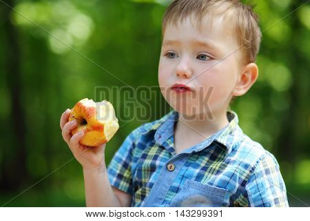 Portrait of little boy eating apple in summer sunny green park