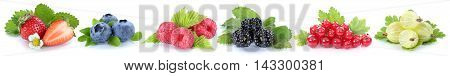 Collection Of Berries Strawberries Blueberries Red Currant Berry Fruits In A Row Isolated On White