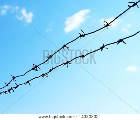 Barbed wire on sky background